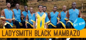 Post image for Ladysmith Black Mambazo Live at the Southern Theatre Tonight